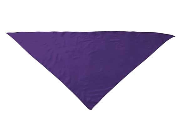 Pañuelo Poliéster Triangular Fiesta Niño